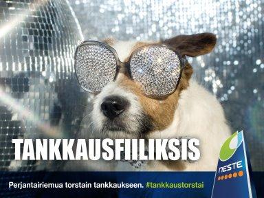 2019_33to_384x288_Neste_TankkausTorstai_Koira
